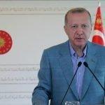 ترکی وبا سے ہونے والے معاشی نقصان کی بحالی کی طرف گامزن؛ ایردوان