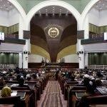 افغانستان کا اعلیٰ اختیاراتی پارلیمانی وفد کل پاکستان پہنچ رہا ہے