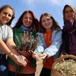 امریکہ سے تعلیم یافتہ ترک خاتون کی کامیاب کاروباری کہانی