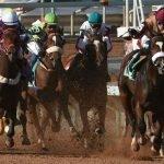 سعودی عرب: دنیا کی مہنگی ترین گھڑ دوڑ، جیتنے والے کو 2 کروڑ ڈالر کا انعام