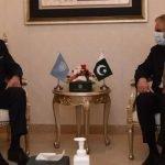 مسئلہ فلسطین کے مستقل حل کے بغیر مشرق وسطیٰ میں قیام امن ممکن نہیں، پاکستانی وزیر خارجہ