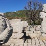 """ترکی: 8 ہزار سال پرانہ  ٹیلہ  """"اسلان تپ""""  یونیسکوعالمی ورثہ  کی فہرست میں شامل"""
