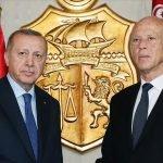 ترک صدر ایردوان نے تیونس کے  اپنے ہم منصب سے ٹیلی فونک  رابطہ کیا