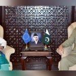 پاکستان:آرمی چیف جنرل قمر جاوید باجوہ  سے یورپی یونین کی سفیر کی ملاقات